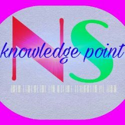 Ns knowledge point